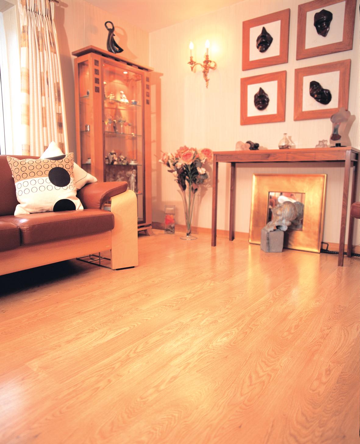Laminate Floor Cleaners Liberon Reviver