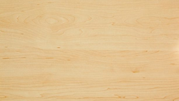Birch Types Of Wood Liberon Wood Cares And Products